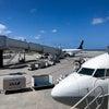 沖縄の空気は既に夏だったという話し 2021-03の画像