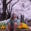 桜撮影会無事に終わりましたの画像