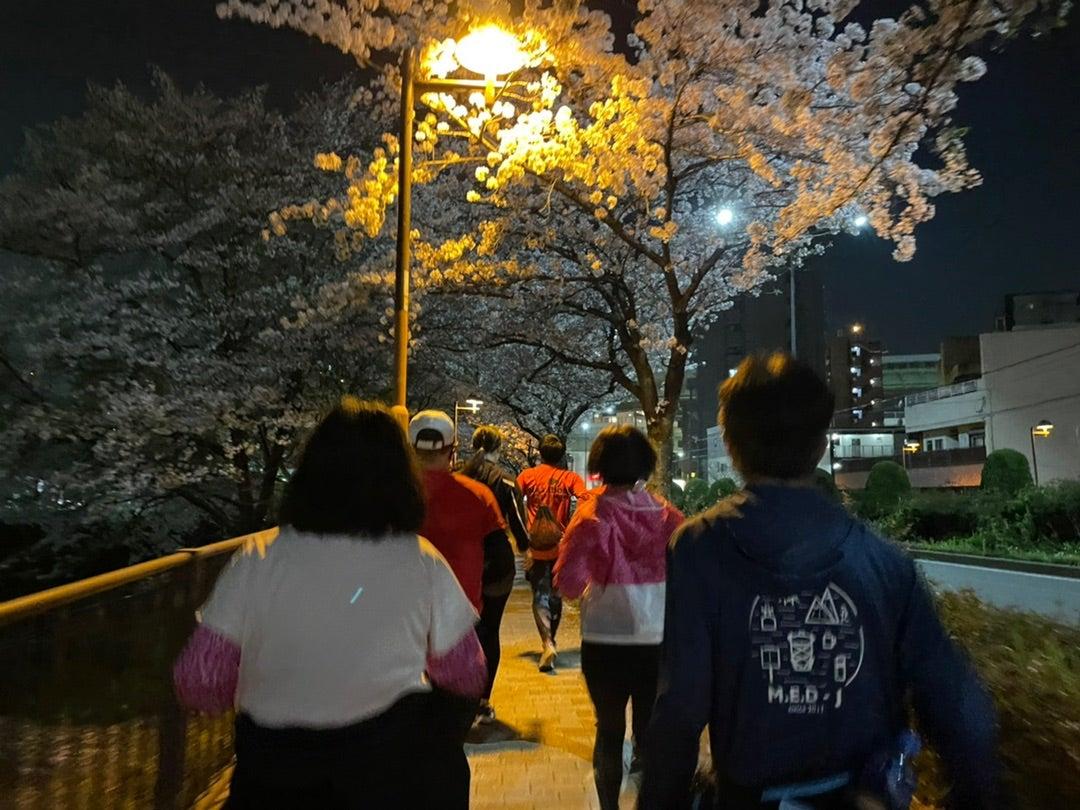 夜桜ラン完走!の記事より
