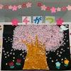 桜舞う…の画像