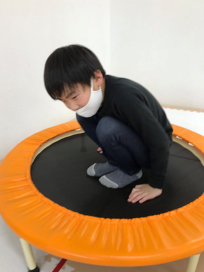 o2881384114919855345 - 3月31日(水)☆toiro仲町台☆ アニマルサーキット