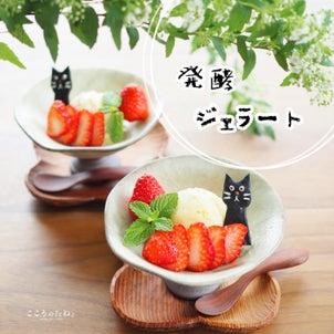 ノンシュガー【発酵ジェラート】レシピの画像