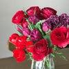 春のおはなあそび~花育~春の花であそぼうの画像