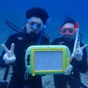 今日も夏日!いざ体験ダイビング//サマードリーム石垣島日記の画像