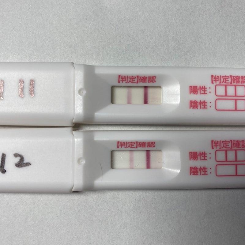 高温期12日目 陰性 妊娠