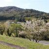 山里への画像