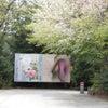 欧米を魅力した花鳥画 渡辺省亭の画像