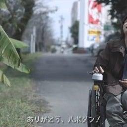 画像 「きゃべつものがたり」 &AKIRAライブ@岐阜市 の記事より 13つ目