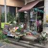 ◆全国初‼︎ビー玉専門店‼︎◆の画像