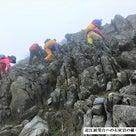 ≪福寿草の花見登山≫ 杉井さんから山歩きの報告です。の記事より