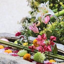 画像 【京都】秀吉が宿所にしていた日蓮宗大本山「妙顕寺」でいただいたステキな【限定御朱印】 の記事より 13つ目