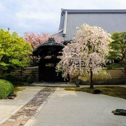 画像 【京都】秀吉が宿所にしていた日蓮宗大本山「妙顕寺」でいただいたステキな【限定御朱印】 の記事より 8つ目