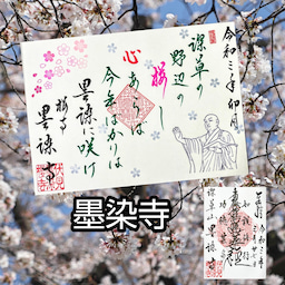 画像 【京都】桜の穴場スポット‼️桜寺「墨染寺」でいただいたステキな【限定御朱印】 の記事より 1つ目