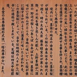 画像 【京都】桜の穴場スポット‼️桜寺「墨染寺」でいただいたステキな【限定御朱印】 の記事より 8つ目