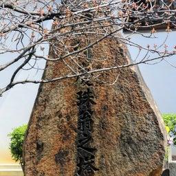 画像 【京都】桜の穴場スポット‼️桜寺「墨染寺」でいただいたステキな【限定御朱印】 の記事より 18つ目
