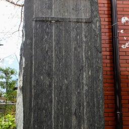 画像 【京都】桜の穴場スポット‼️桜寺「墨染寺」でいただいたステキな【限定御朱印】 の記事より 19つ目