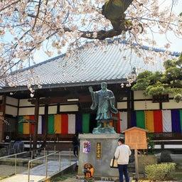 画像 【京都】桜の穴場スポット‼️桜寺「墨染寺」でいただいたステキな【限定御朱印】 の記事より 6つ目