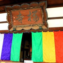 画像 【京都】桜の穴場スポット‼️桜寺「墨染寺」でいただいたステキな【限定御朱印】 の記事より 7つ目