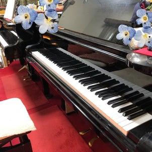 ピアノレッスンの日の画像