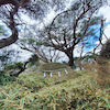 レムリアの聖地〜六甲山巡礼の画像