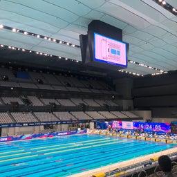 画像 水泳日本選手権 の記事より