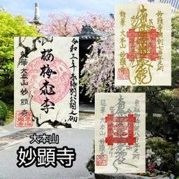 画像 【京都】秀吉が宿所にしていた日蓮宗大本山「妙顕寺」でいただいたステキな【限定御朱印】 の記事より 1つ目