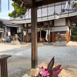 画像 武庫之荘スタジオ教室後、画廊喫茶蜜さんでの作品展の搬入でした の記事より 3つ目