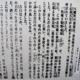 画像 【愛知】疫病退散‼️牛久保八幡社でいただいたステキな【御朱印】 の記事より 6つ目