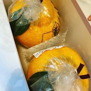 大好きな京都のお菓子の画像