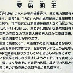 画像 【栃木】昌玖寺でいただいたステキな【仏画御朱印】 の記事より 4つ目