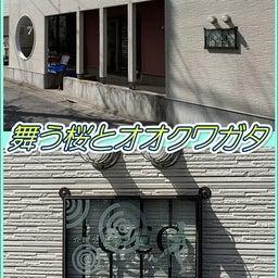 桜とオオクワガタ☆8周年記念!東京都足立区綾瀬の足つぼ&タイ古式&アロマオイルマッサージ☆06