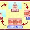 肩こり・肩痛は女性では1位、男性では2位 ~ 簡単な解消法!!の画像