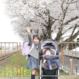 娘ちゃん小学校入学の画像