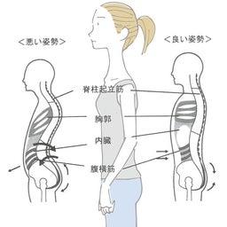 脊柱起立筋・腹横筋