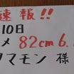 ヒラメ82cm!