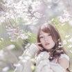 艶やか美人・桜ゆりかちゃん3『桜花行路は山辺へと1・速報』