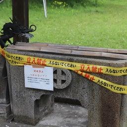 画像 【鹿児島】島津義弘公をお祀りする精矛神社でいただいたステキな新作【御朱印帳】 の記事より 7つ目