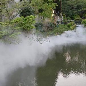椿山荘の雲海の画像