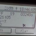 レース鳩フライター赤道