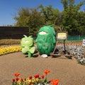 愛・地球博記念公園(モリコロパーク)散歩 4月11日