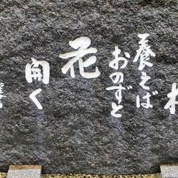 画像 【愛知】龍光山「瑞雲寺」でいただいたステキな【飛びだす御朱印】~追加掲載版~ の記事より 18つ目