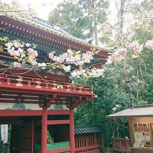 桜花賞の行方と春の陽気★の画像