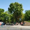 リハーサル、ベビーオープンクラスレッスン風景の画像