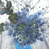 ステキなお花に癒される☆Bloomee(ブルーミー)の画像