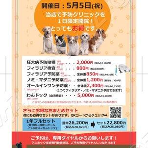 5月5日限定☆予防クリニック開院!の画像
