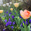 【教室レポート】春の気持ちはどんな色?コラージュしようの画像