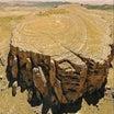 【テレグラム】巨大な樹木の残骸