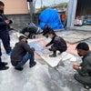 コンクリート研磨セミナーの画像