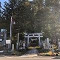 パワー全開!爺スギ婆スギ 諏訪神社(福島県小野町夏井)