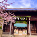 淡路島隠れた桜の名所。磐座群整備で活気付く、安乎八幡神社/神奈木流 体バランス法